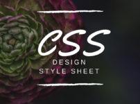 CSS 202x150 - WordPressでCSSを編集したのに適用されない!解決方法のチェック手順